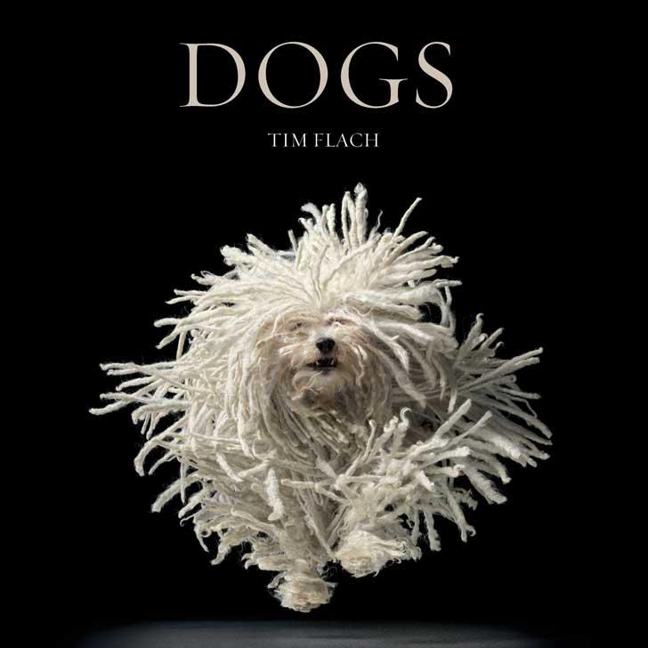 Pet Dog Choices 5 Top Rated Dog Breed Books Doorstepzoo Com