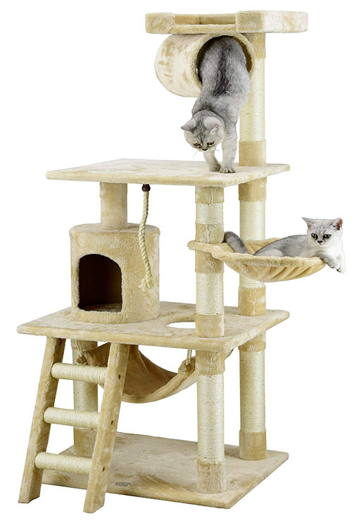 ragdoll cats play tree hopuse
