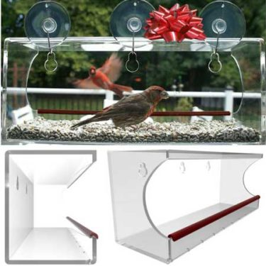 window feeder