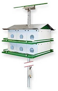 Nature House Martin bird house Safety System with Pole
