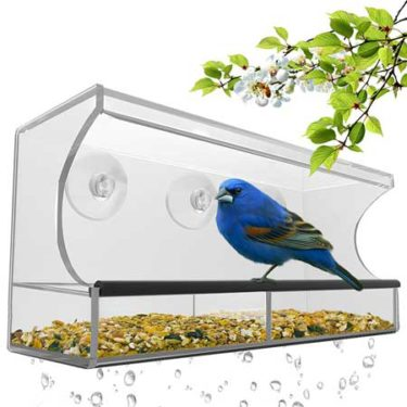 best rated wild bird window feeder large