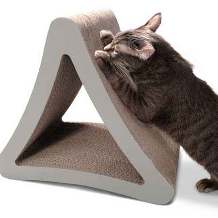 Get a cat scratcher and save your sofa!