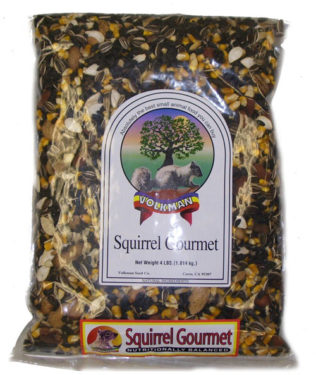 best food for squirrels - mixed pumpkin seeds