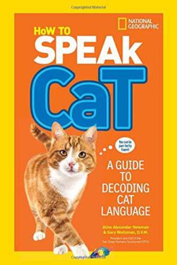 How to Speak Cat: A Guide to Decoding Cat Language 4