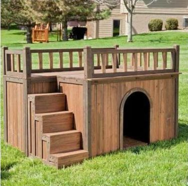 dog house with flat roof and stairs