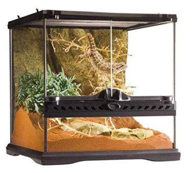 good pet snakes terrarium