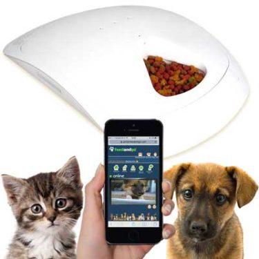 autopetfeeder feeder cat cats as pets feeding such for ergo small replace feeders er pet dog automatic gs sized bowls es