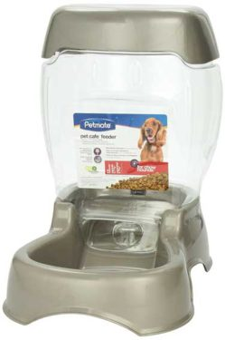 petsafe best automatic cat feeder