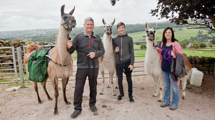 Llama Trekking in Yorkshire - Bizarre but Brilliant!