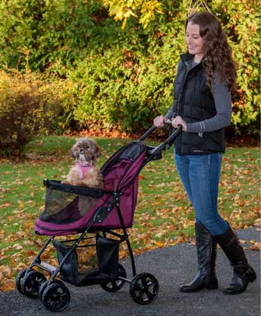 best dog stroller review