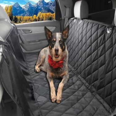 car cover for pets