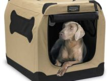 Petnation-Port-A-Crate-Indoor-and-Outdoor-Home-for-Pets