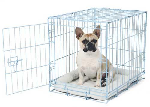 Single Door Metal best Dog Crates Carlson Pet Deluxe Pet Crate – Small