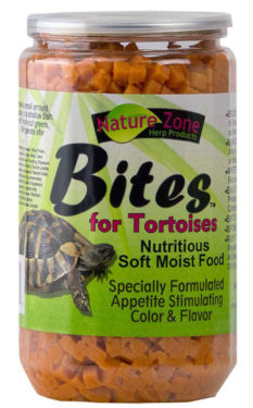 having a tortiose for a pet food