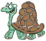 how-to-draw-a-cartoon-tortoise6f